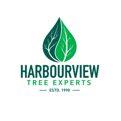 Harbourview Tree Experts
